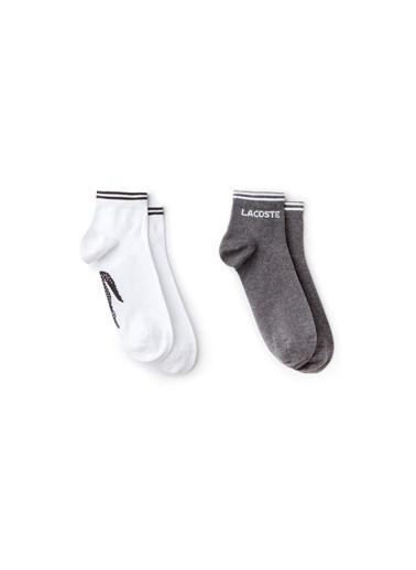 Lacoste Çorap Gri